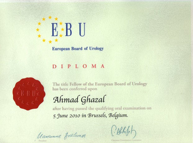 Fellow of European Board of Urology